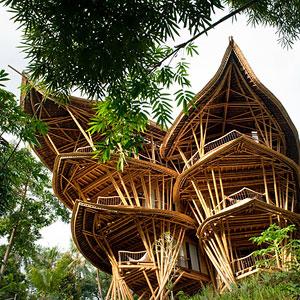 Woman Quits Job to Build Sustainable Bamboo Homes In Bali