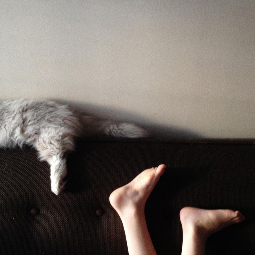 boy-cat-friendship-beth-mancuso8