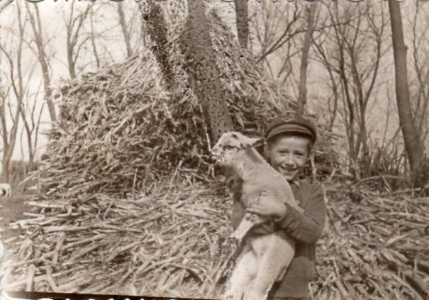 Little Boy With Lamb, Romania, Late 1960s