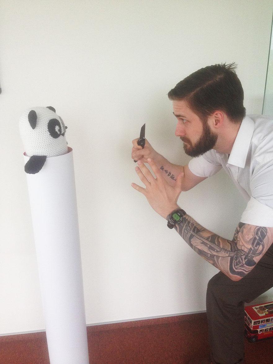 Panda-fight!