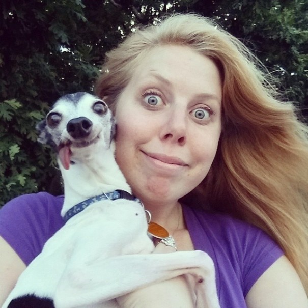 derpy-dog-greyhound-sticking-tongue-zappa-17