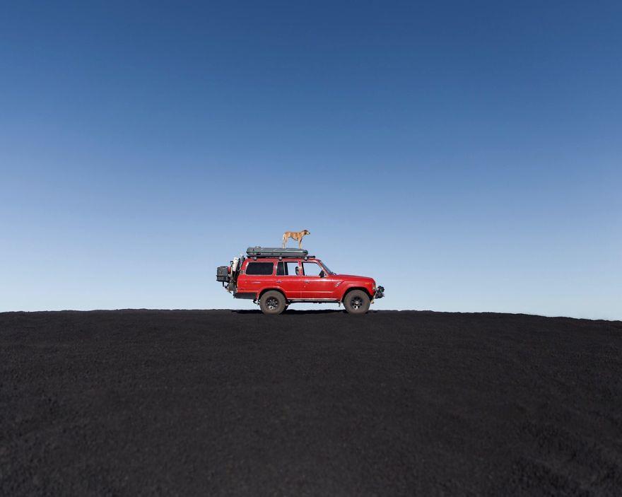 dog-traveling-car-motorcycle-maddie-on-road-13