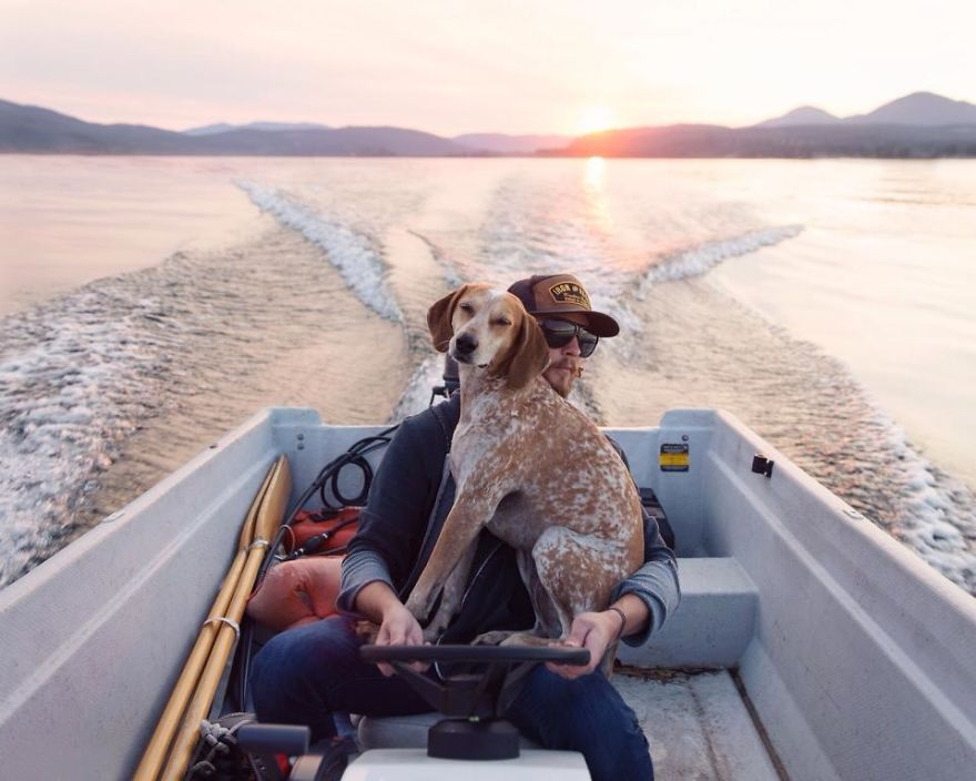 dog-traveling-car-motorcycle-maddie-on-road-14