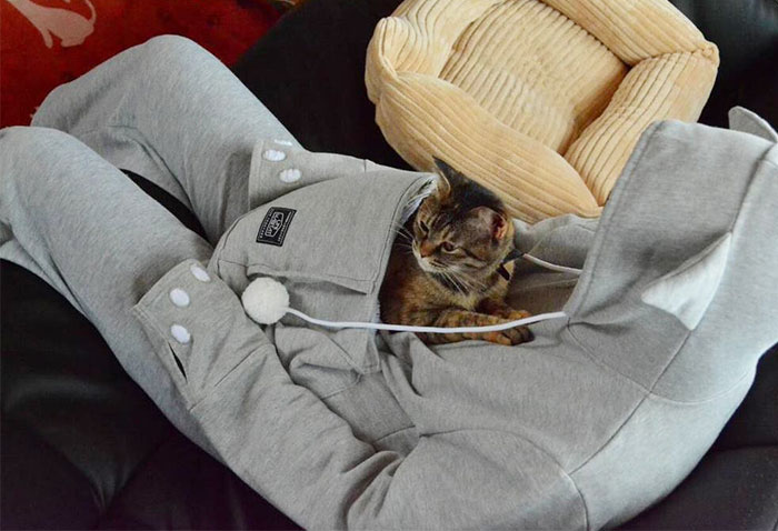 Cat Hoodie With Kangaroo Pouch Lets You Take Your Pet Wherever You Go
