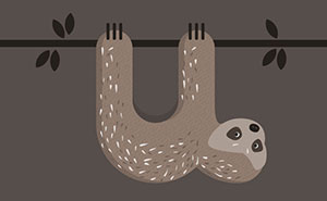 Animal Alphabet Made From The First Letters Of Their Names