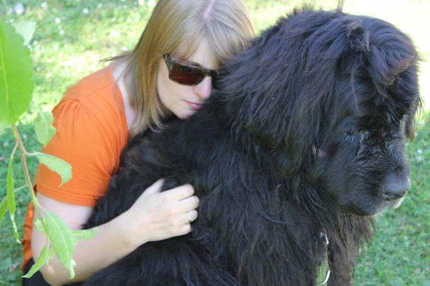 Big Dogs Also Need Hugs