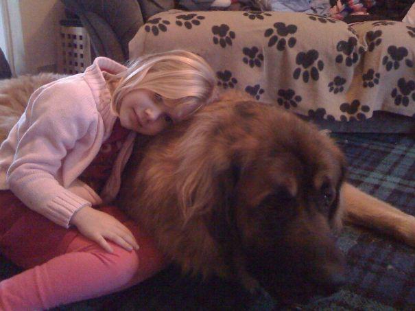 Yogi Is Just A Big Pillow