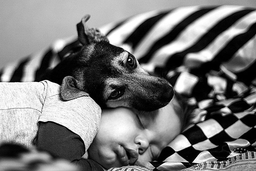 kids-animals-family-photography-mother-agnieszka-gulczyiska
