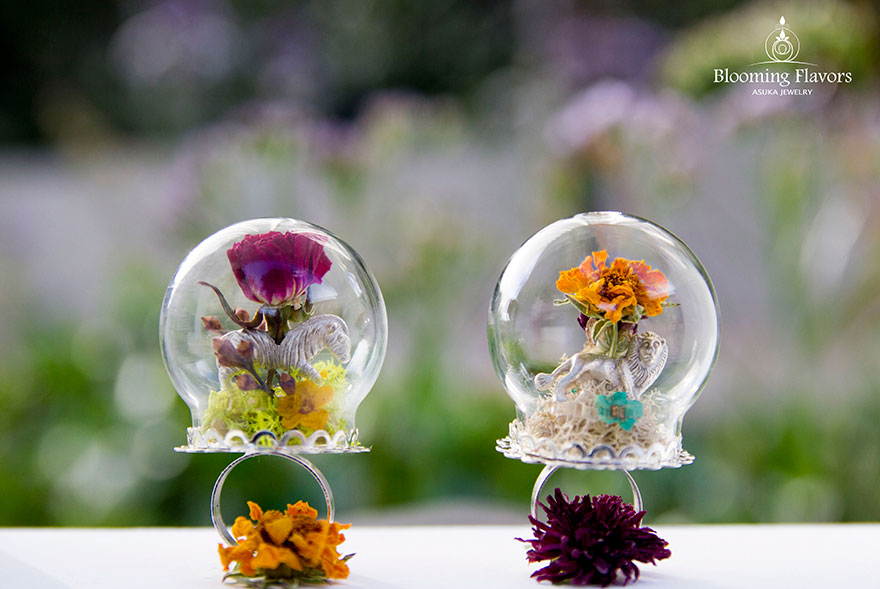 nature-scape-terrarium-ring-blooming-flavors