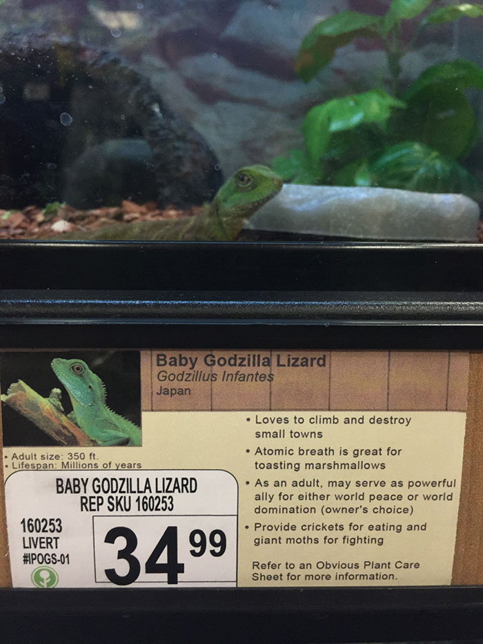 pet-shop-fake-name-prank-obvious-plant-jeff-wysaski-1