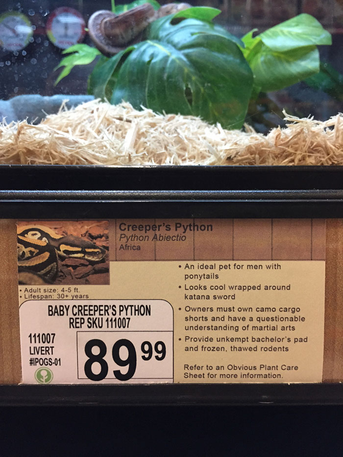 pet-shop-fake-name-prank-obvious-plant-jeff-wysaski-4