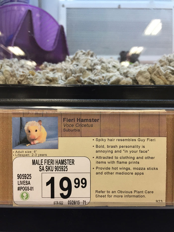 pet-shop-fake-name-prank-obvious-plant-jeff-wysaski-6