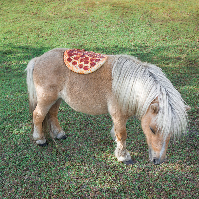 Pizza In The Wild