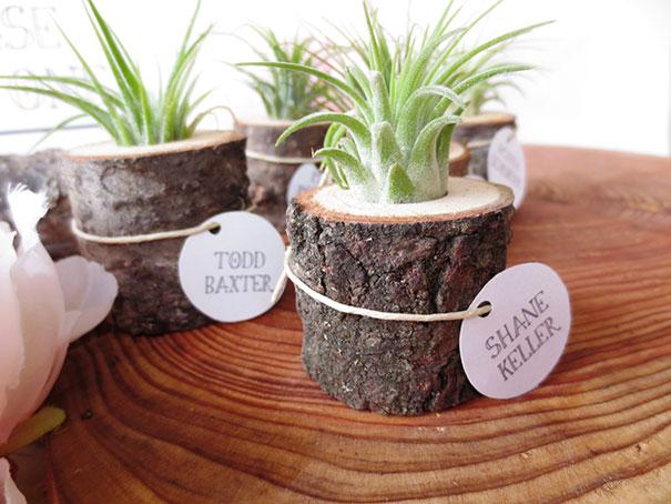Small Stump Planter
