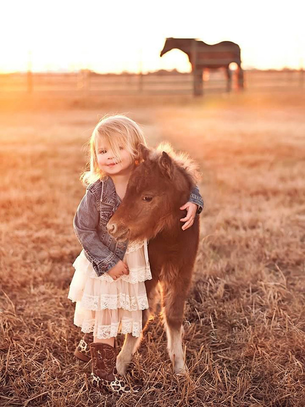 My Family's Newborn Mini Horse And Cute Little Girl