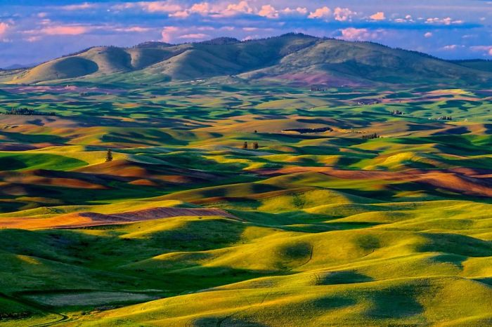 Palouse Valley, Washington, Usa.
