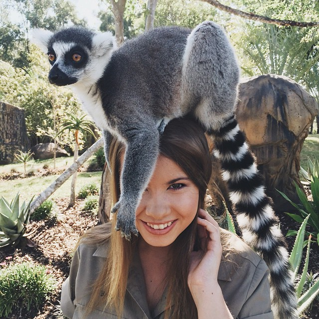 16-year-old-bindi-irwin-crocodile-hunter-fathers-legacy-australia-zoo-1