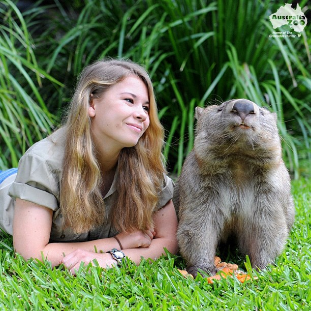 Как живет зоопарк Стива Ирвина: лучшие фото