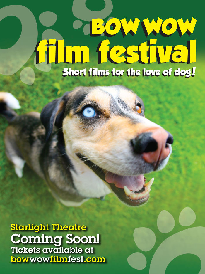 Bow Wow Film Fest-short Films For The Love Of Dog