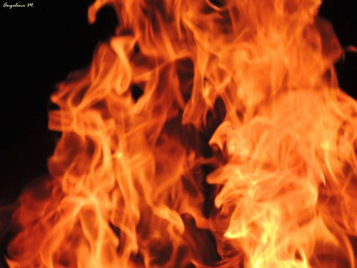 """(un)tamed Fire"" – Portraits Of Fire"