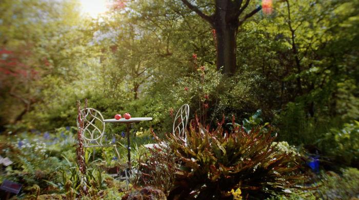 Oasis Of Matisse