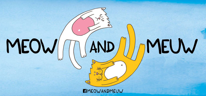 Meow And Meuw: The Cats With Sarcasm