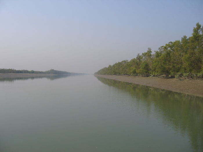 India-bangladesh Border In Sundarbans