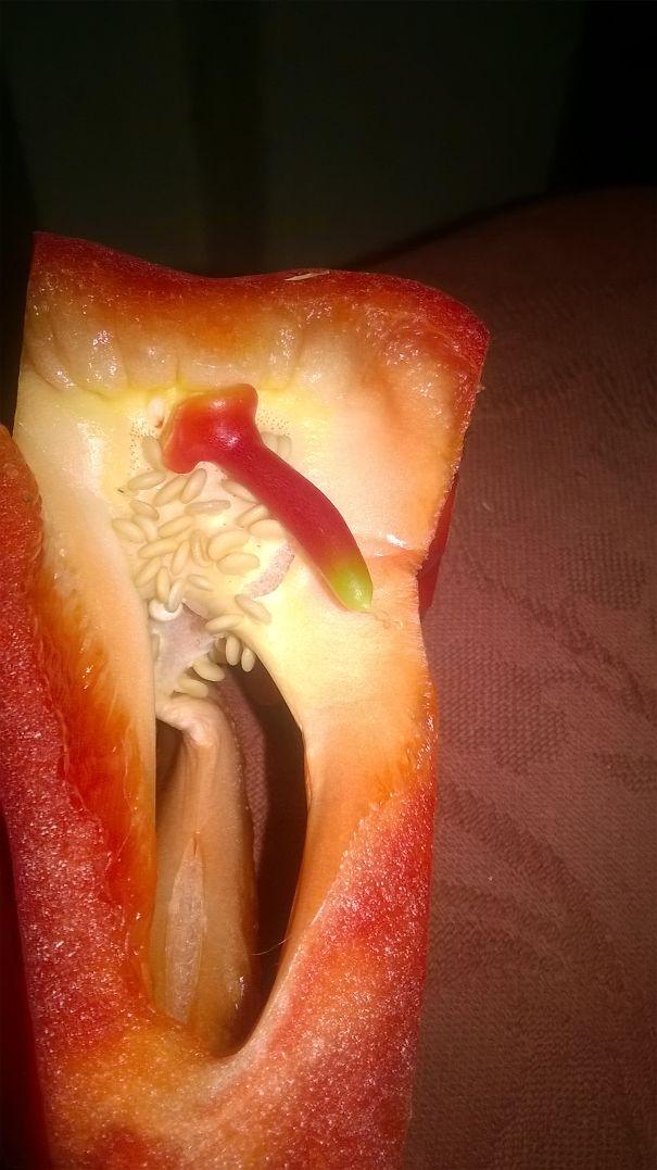 Hot Pepper!