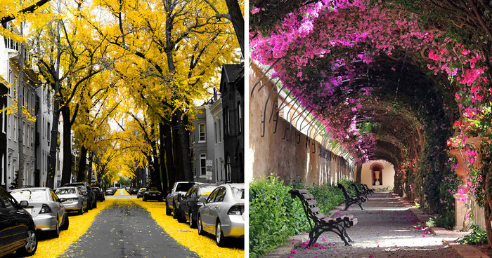 Beautiful streets of the world 32