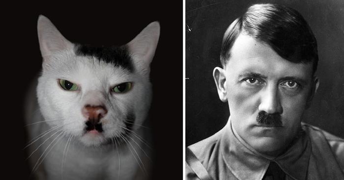 Seems Legit! Celebrity Photoshop Fails - YouTube