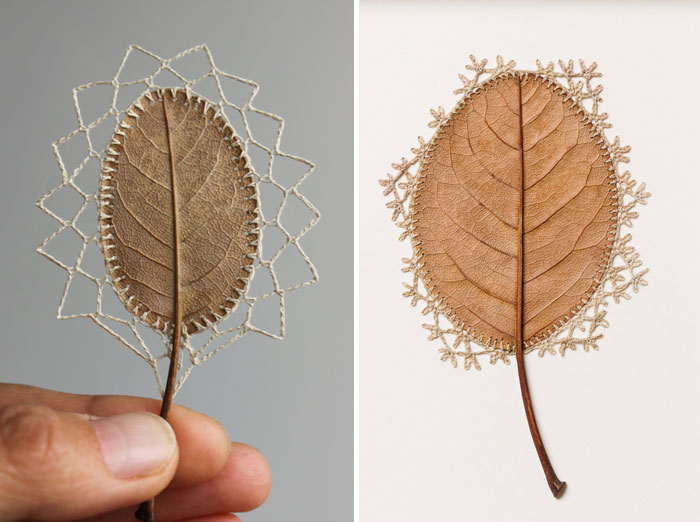 Delicate Crocheted Leaf Sculptures By Susanna Bauer