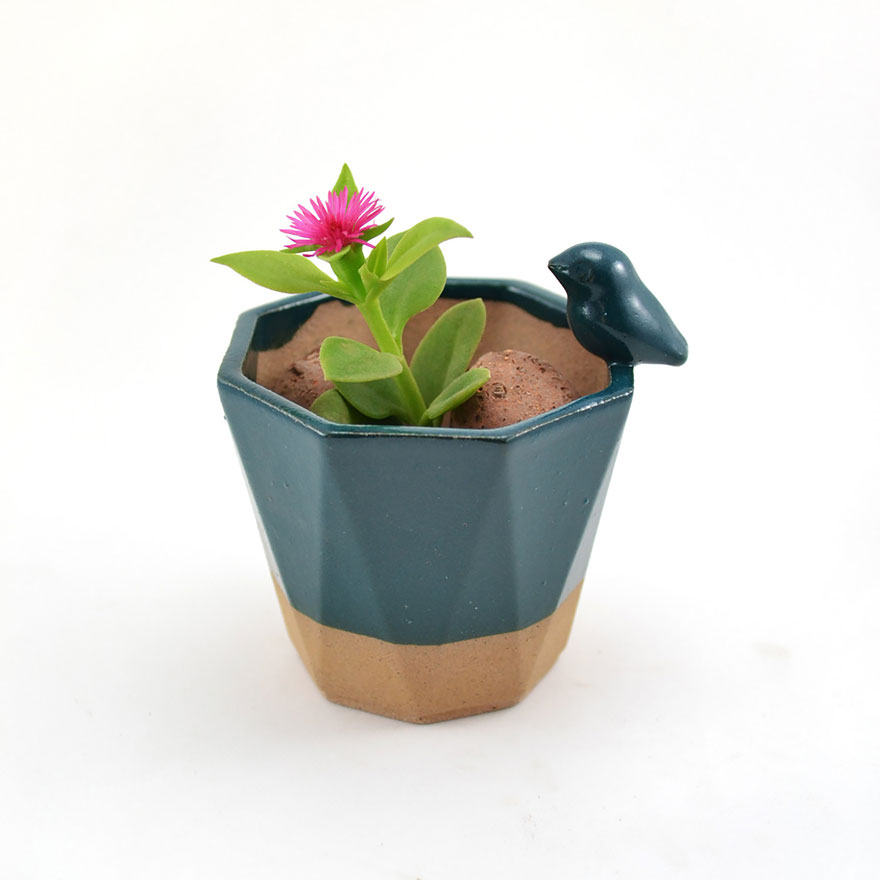 cute-succulent-planters-ceramic-stoneware-priscilla-ramos-cumbachic-10