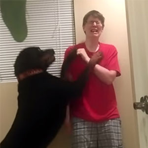 Dog Saves Owner With Asperger's Syndrome From  Violent Meltdown