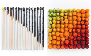Satisfying Arrangements Of Everyday Objects By Emily Blincoe