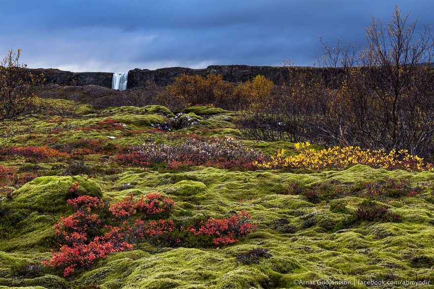 North Of Westeros: Thingvellir, Iceland