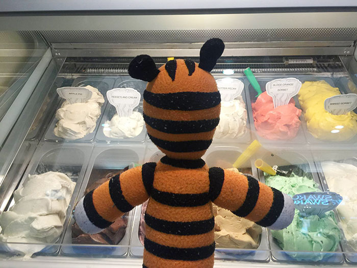 hobbes-stuffed-animal-lost-airport-tampa-international-owen-lake-2