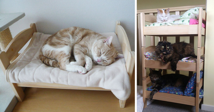 Japanese Cat Owners Turn IKEA Doll Beds Into Adorable Cat Beds