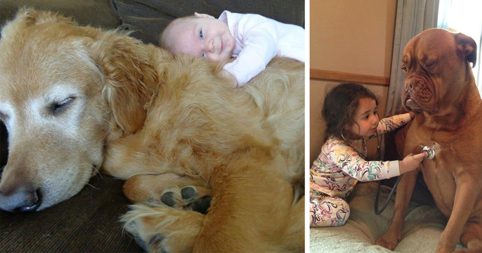 Adorable Photos Proving That Your Kids Need A Dog Bored Panda - 23 adorable photos proving babies need pets
