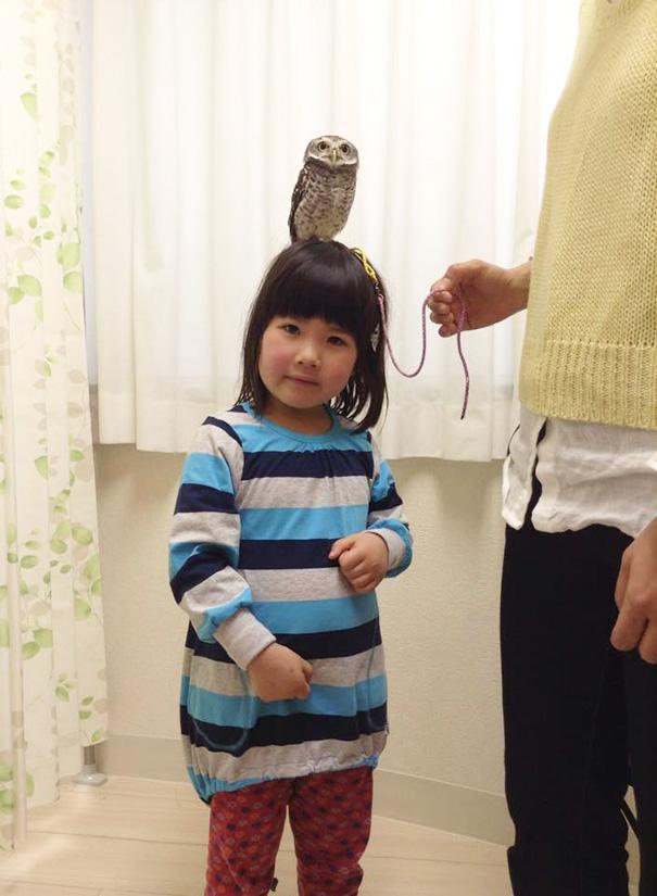 owl-cafe-ikefukuroucafe-tokyo-21