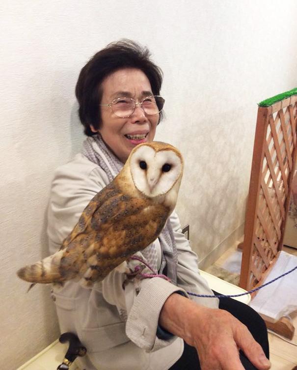 owl-cafe-ikefukuroucafe-tokyo-23