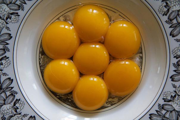 These Lovely Egg Yolks