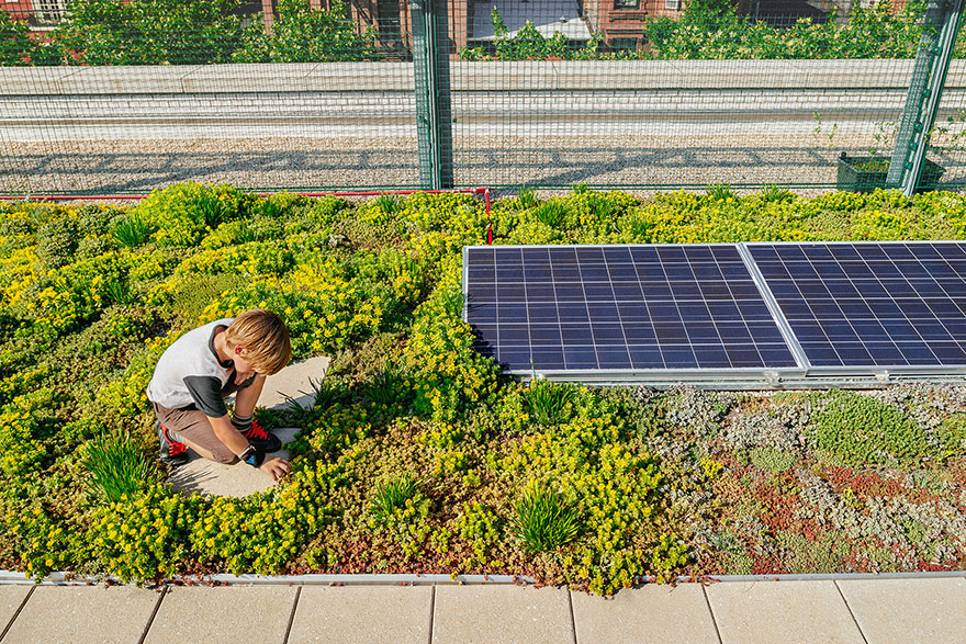 solar-panel-roof-green-schools-nyc-10