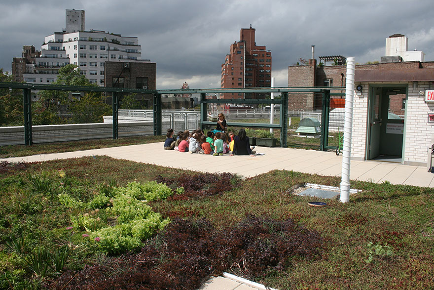 solar-panel-roof-green-schools-nyc-2