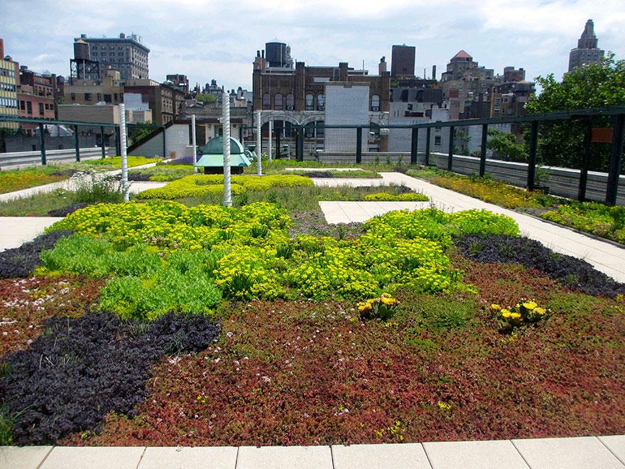 solar-panel-roof-green-schools-nyc-6