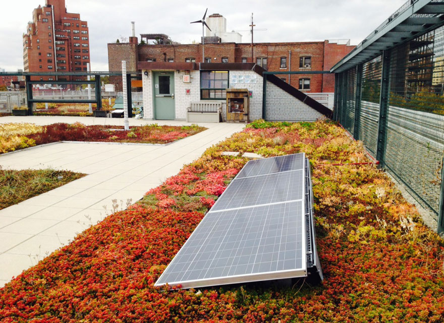 solar-panel-roof-green-schools-nyc-7