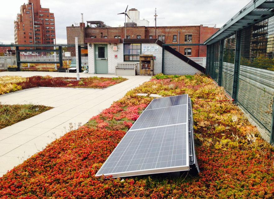 solar-panel-roof-green-schools-nyc-7