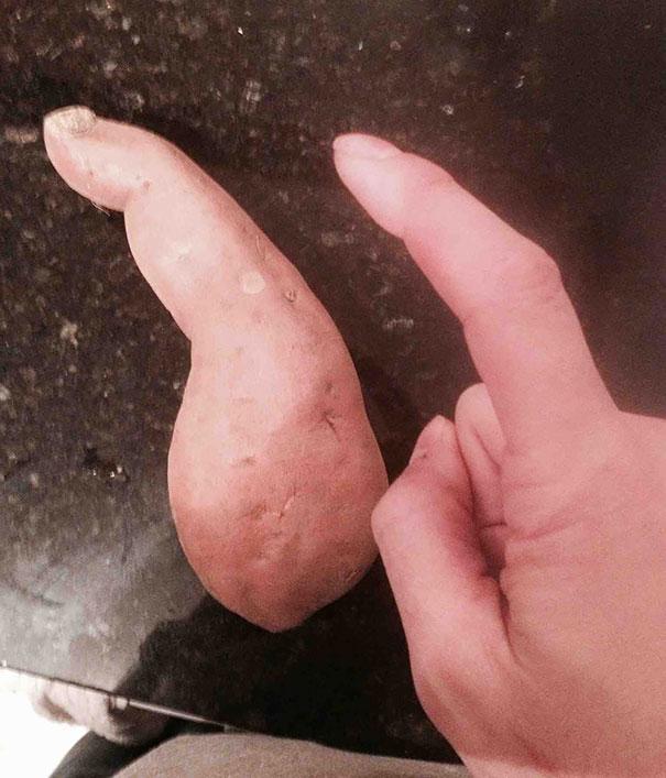 Sweet Potato Looks Like Finger