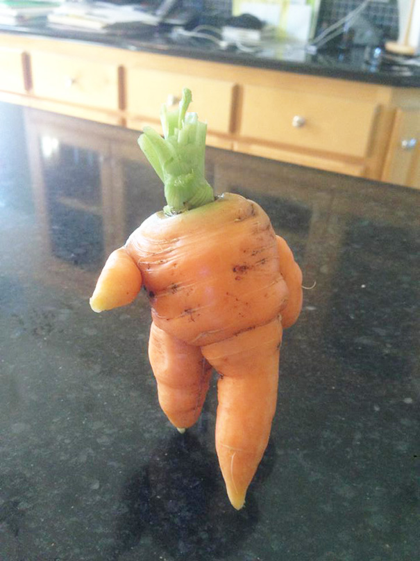 Carrots, The World's Most Perfect Vegetable