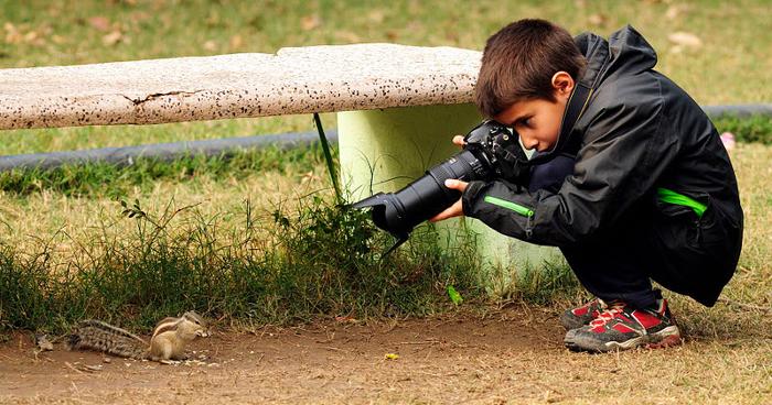 Wildlife Photography Jobs