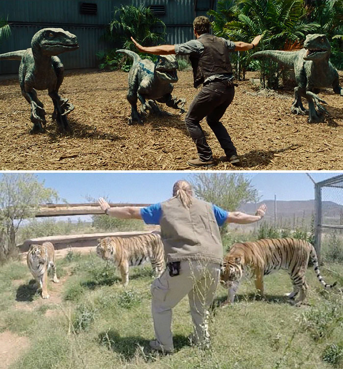 Hilarious Zookeepers Recreate Jurassic World Scene With Animals